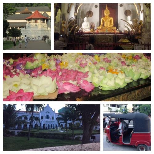 Experiencing Sri Lankan culture